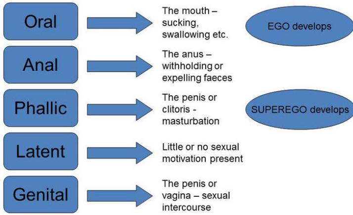 Psychosexual development critics